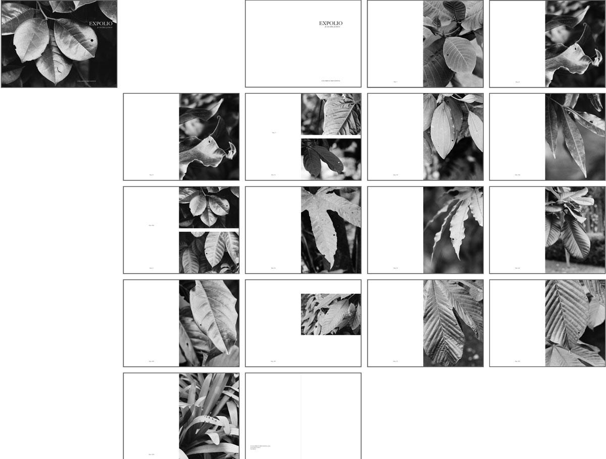 EXPOLIO, 2010. Gelatina de plata digitalizada impresa con pigmentos naturales sobre papel. Políptico (18): 30 x 40 cm c/u